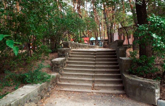 Каменные лестницы в парке