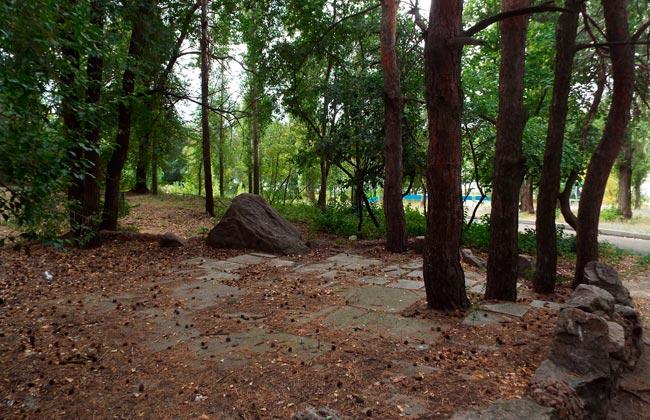 Живописные уголки парка Дельфин в Воронеже