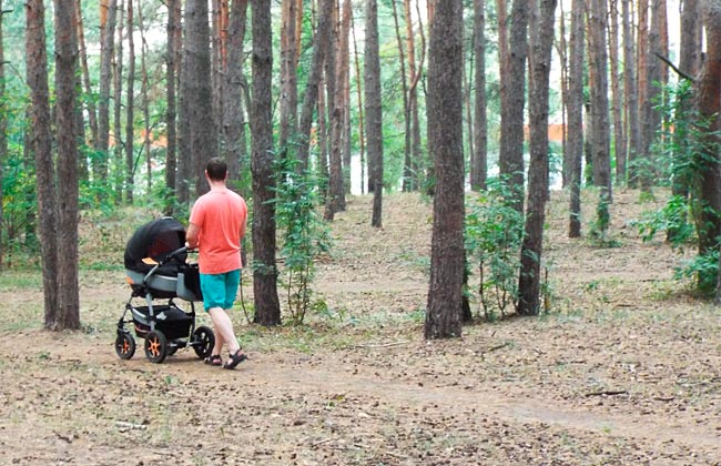 Летский парк Танаис в Юго-Западном районе Воронежа