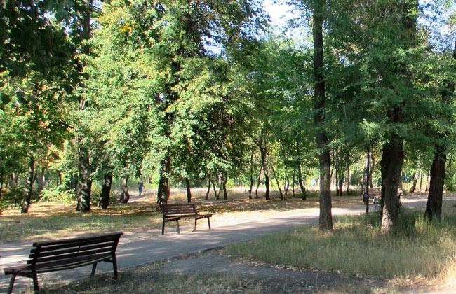 Аллеи Южного парка (Воронеж)