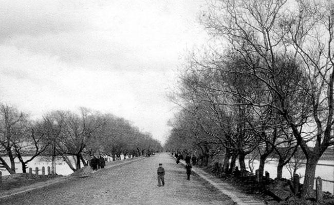 Придаченская дамба в Воронеже, начало прошлого века