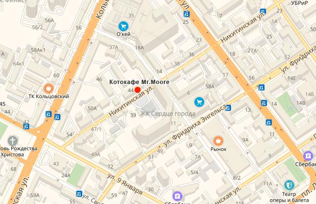 Котокафе Мистер Мур на карте Воронежа, где находится